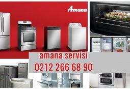 Ataşehir Amana Servisi