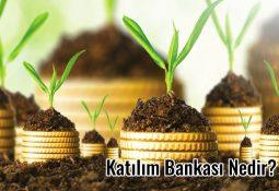 Katılım Bankası Nedir