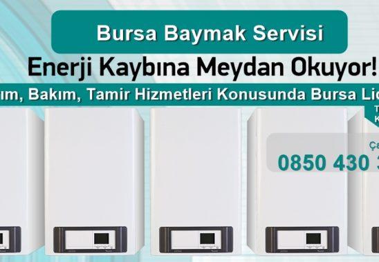 Bursa Baymak Servisi
